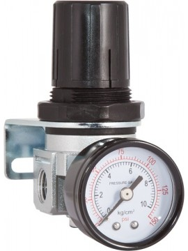 Air Regulator and Gauge only 1/4""